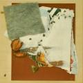 Fruchtung - 2015 - 30 x 30 cmHolzkasten, (Sand-) Papier, Filz, Früchte/Samen